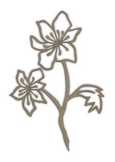 KD24 Spring Flowers 3